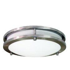 1 Light Flush Mount