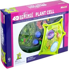 4D-Science Plant Cell Anatomy Model