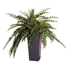 "Floral 30"" Artificial Potted Double Boston Fern in Green"