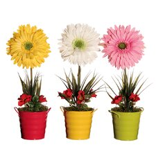 Floral Giant Gerbera Daisy Assortment
