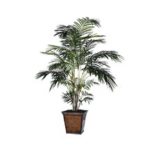 Deluxe Extra Tropical Palm Tree
