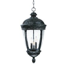 Fleur de Lis 3 Light Outdoor Hanging Lantern
