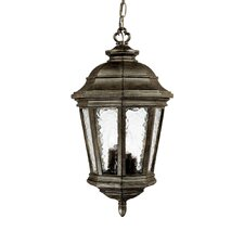 Barrington 4 Light Outdoor Hanging Lantern