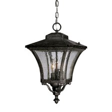 Tuscan 3 Light Outdoor Hanging Lantern