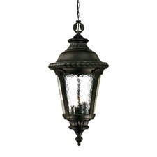 Surrey 4 Light Outdoor Hanging Lantern