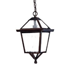 Charleston 1 Light Outdoor Hanging Lantern