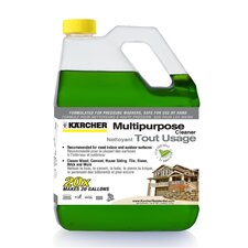 Multi-Purpose Gas Pressure Washer Detergent 1 Gallon