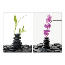 Spring into Summer Orchids Modern Wall Art Decoration