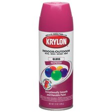 12 Oz Raspberry Indoor and Outdoor Spray Paint Gloss