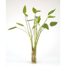 Silk Tropical Leaf Plant in Glass Vase