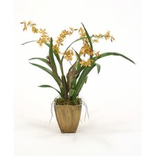 Silk Oncidium Orchid Garden Mix in Planter