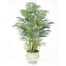 "84"" Areca Palm in Concrete Lite Atlanta Urn"