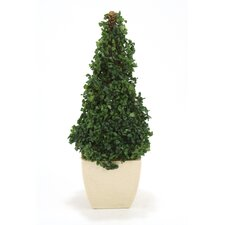 Silk Boxwood Cone Topiary in Square Planter