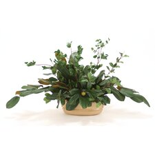 Silk Magnolia Foliage in Oval Milu Planter
