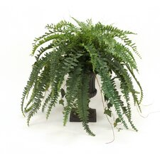 Silk Boston Fern, Ivy, Grass and Twig Branches in Classic Urn