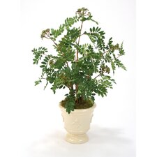 Silk Mountain Ash Floor Plant in an Ceramic Planter with Fleur de Lis Pattern