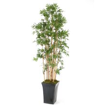 "90"" Bamboo Thicket in Tall Flared Metal Planter"