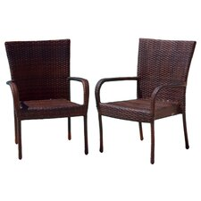 Outdoor Wicker Chair in Multi-Color Brown (Set of 2)