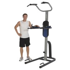 275 Extended Weight Capacity Power Tower Fitness Station