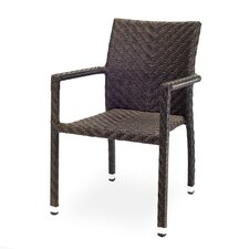 Miami Dining Arm Chair
