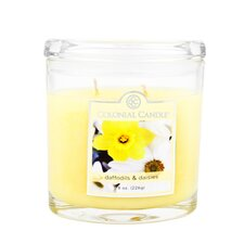 Daffodils and Daisies Jar Candle