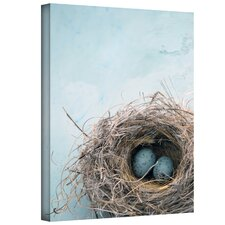 Elena Ray 'Blue Nest' Gallery-Wrapped Canvas Wall Art