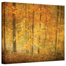 David Liam Kyle 'Lost in Autumn' Gallery-Wrapped Canvas Wall Art