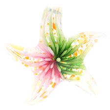 True Hope Murano Inspired Glass Blooming Star Necklace Pendant