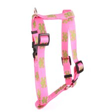 Pink/Green Skulls Roman Harness