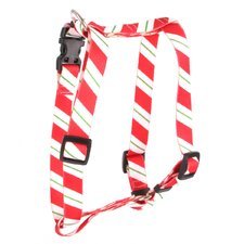 Peppermint Stick Roman Harness