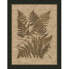 Polypodies Ferns Wall Art