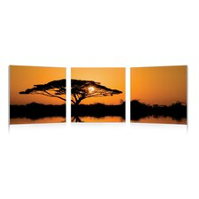 Baxton Studio Savannah Sunset Mounted Photography Print