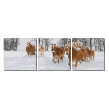 Baxton Studio Horse Herd Mounted Photography Print