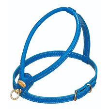 Fashion Leather Dog Harness in Blue