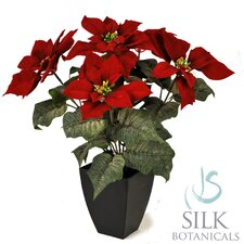 Velvet Poinsettia Bush in Vase