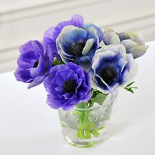 Anemone in Glass Vase
