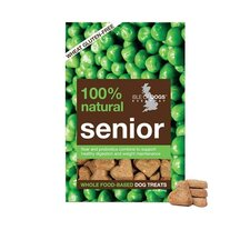 Senior Biscuit Dog Treat