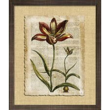 Floral Living Antiquarian Tulips I Framed Wall Art