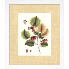Floral Living Buchoz Leaves II Framed Wall Art