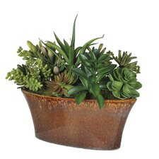 Artificial Succulent Garden in Oval Ceramic Vase