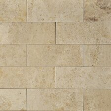 "8"" x 3"" Limestone Tile in Cantillion"
