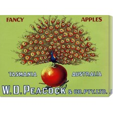 'W.D. Peacock Fancy Apples' by Retrolabel Stretched Canvas Art