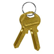 Blank Key for Designer Wood Locker (Set of 50)