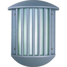 Zenith 2 Light Outdoor Wall Sconce