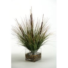 Onion Grass and Cattails in Glass Cube