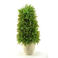 Wild Grass Cone Topiary in Ceramic