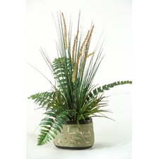 Onion Grass and Fern in Oblong Ceramic Planter