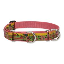 "Flower Patch 1"" Adjustable Large Dog Combo Collar"