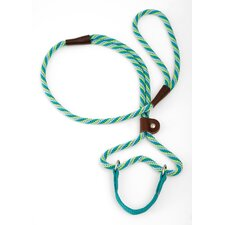 Twist Dog Walker in Seafoam