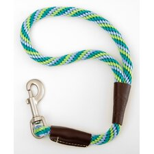 Twist Traffic Leash in Seafoam